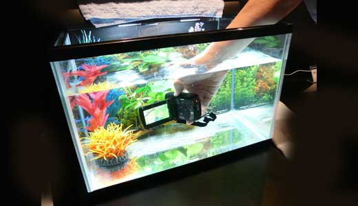 Are you amazed with the Golden Shellback coating that can make every gadget waterproof? Are you sure to try the amazing chemistry? Can it realy work as shown on the video? Does it work for complex device such digital camera? If not, Panasonic has shown its proven underwater HD cameras […]